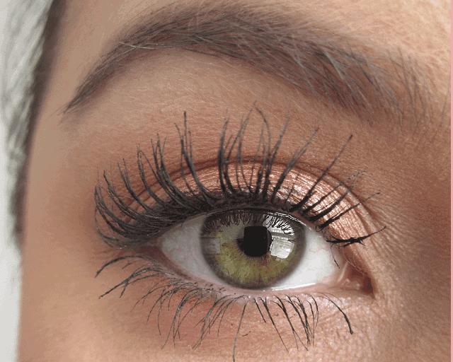ColourPop cosmetics eyeshadow swatches, la la, shop, hanky panky, hustle