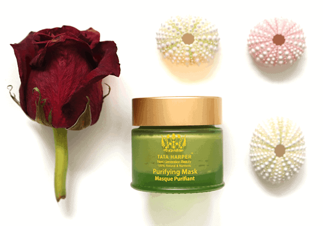 This Just In : Tata Harper Purifying Mask