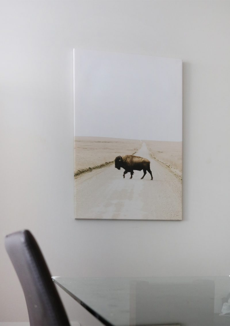 Canvas Prints with Bestcanvas.ca Giveaway